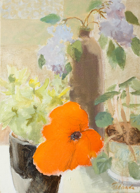 Klusā daba ar magoni | Still life with poppy
