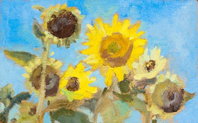 Saulespuķes | Sunflowers